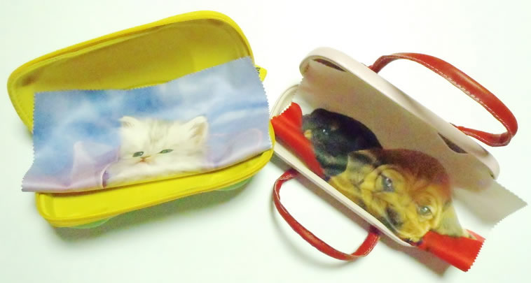 Eyeglass Case Interior